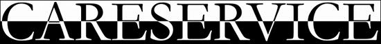 Cs, CAREservice careservice-banner-1 Centro Assistenza e Ricambi Electrolux Vinovo Accessori Ricambi  Electrolux