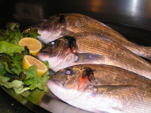 pesce-28
