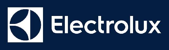 Cs, CAREservice ELECTROLUX-LOGO Centro Assistenza e Ricambi Electrolux Vinovo Accessori Ricambi  Electrolux